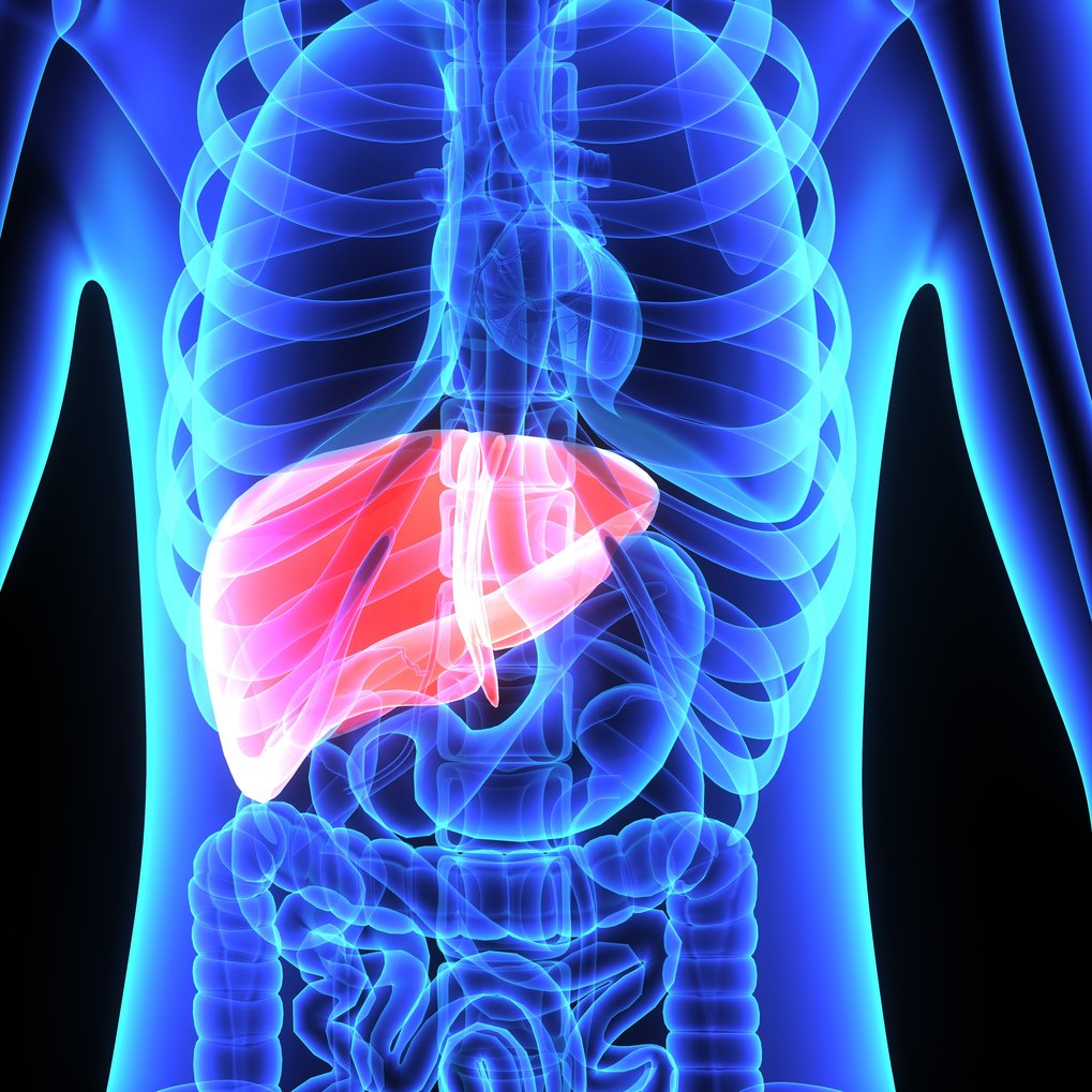 Towards a blood test for early-stage liver disease