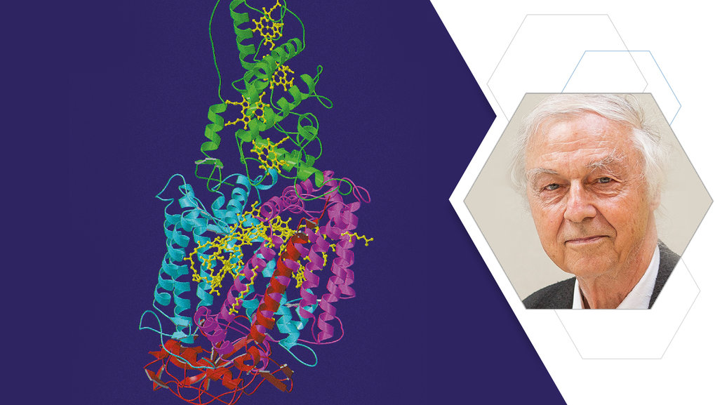Structural Biology, Methods of Protein Crystallography, Protein Degradation, Medicinal Chemistry