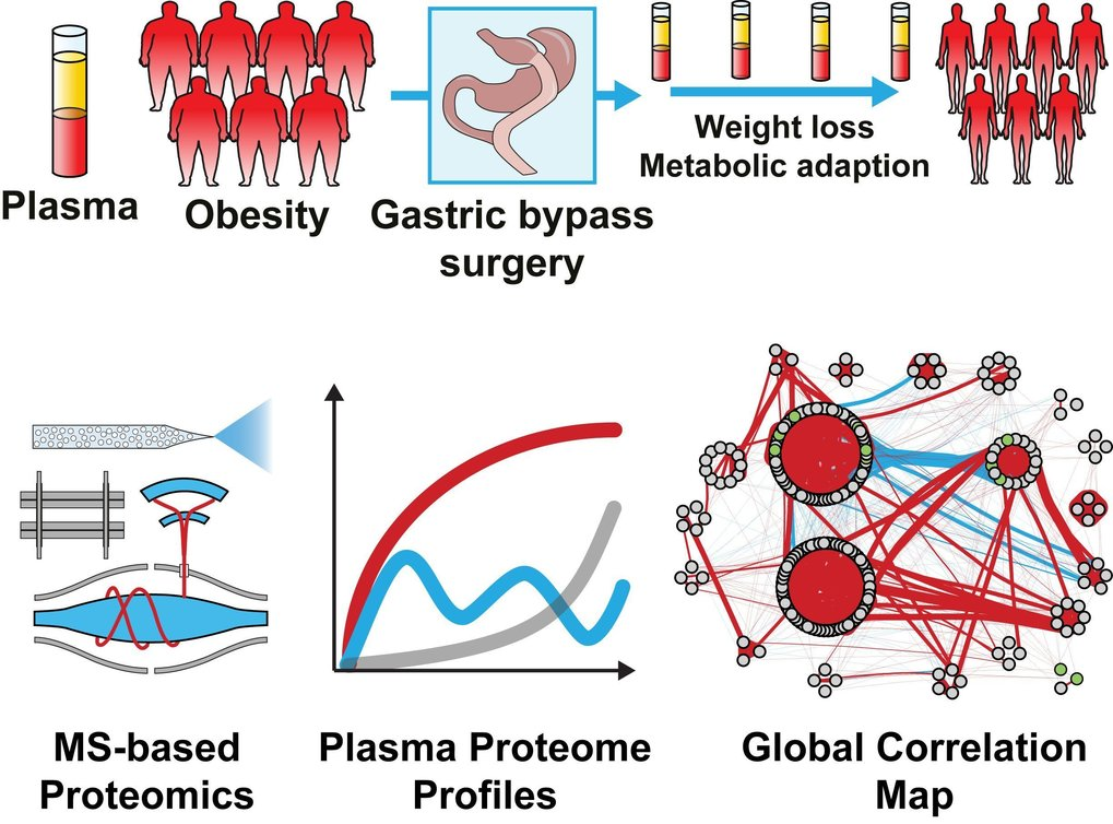 Plasma Proteome Profiling Reveals Dynamics of Inflammatory and Lipid Homeostasis Markers after Roux-En-Y Gastric Bypass Surgery