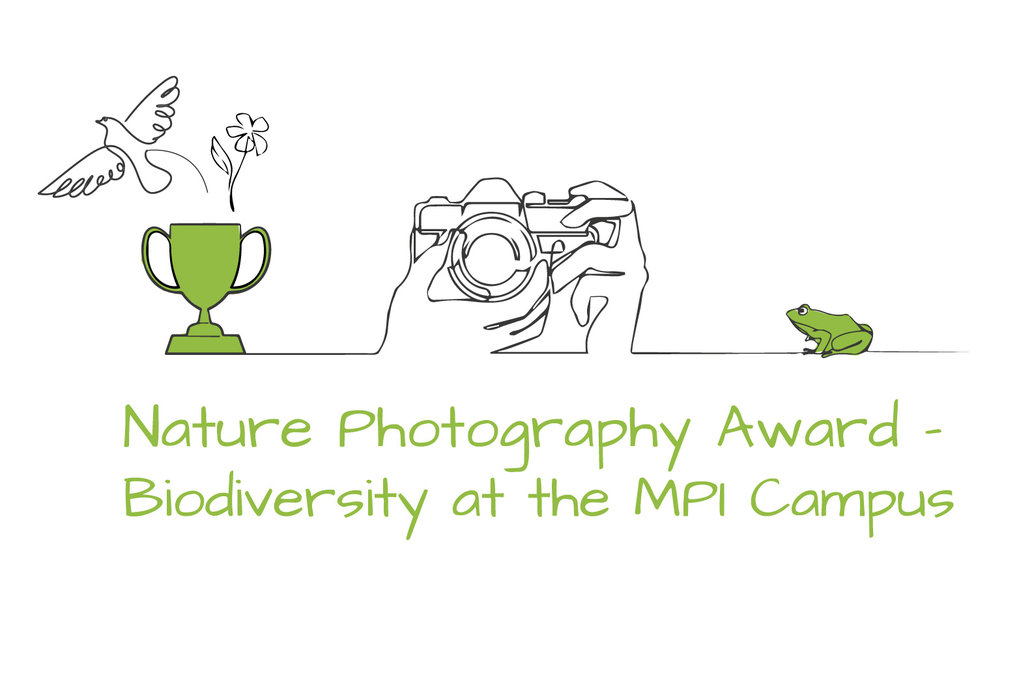 Nature Photography Contest 2020